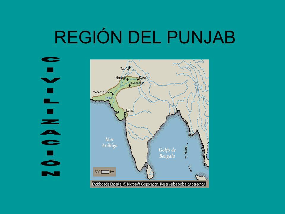 REGIÓN DEL PUNJAB