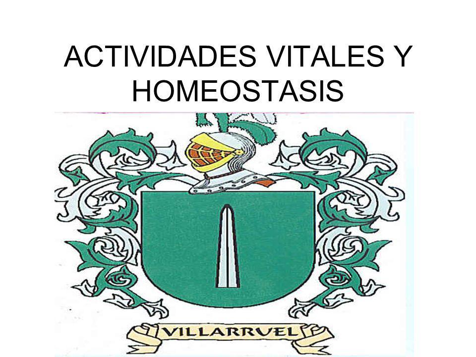 ACTIVIDADES VITALES Y HOMEOSTASIS FUNCIONES DE UN SER VIVO: FUNCIONES VEGETATIVAS FUNCIONES DE RELACION