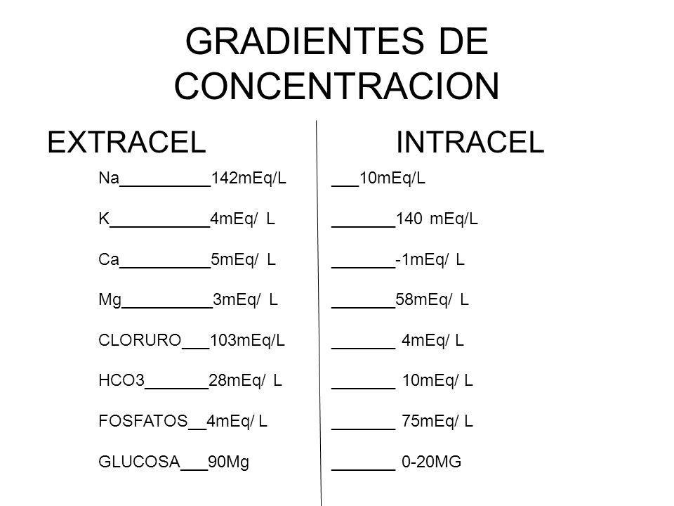 GRADIENTES DE CONCENTRACION EXTRACEL INTRACEL Na__________142mEq/L K___________4mEq/ L Ca__________5mEq/ L Mg__________3mEq/ L CLORURO___103mEq/L HCO3