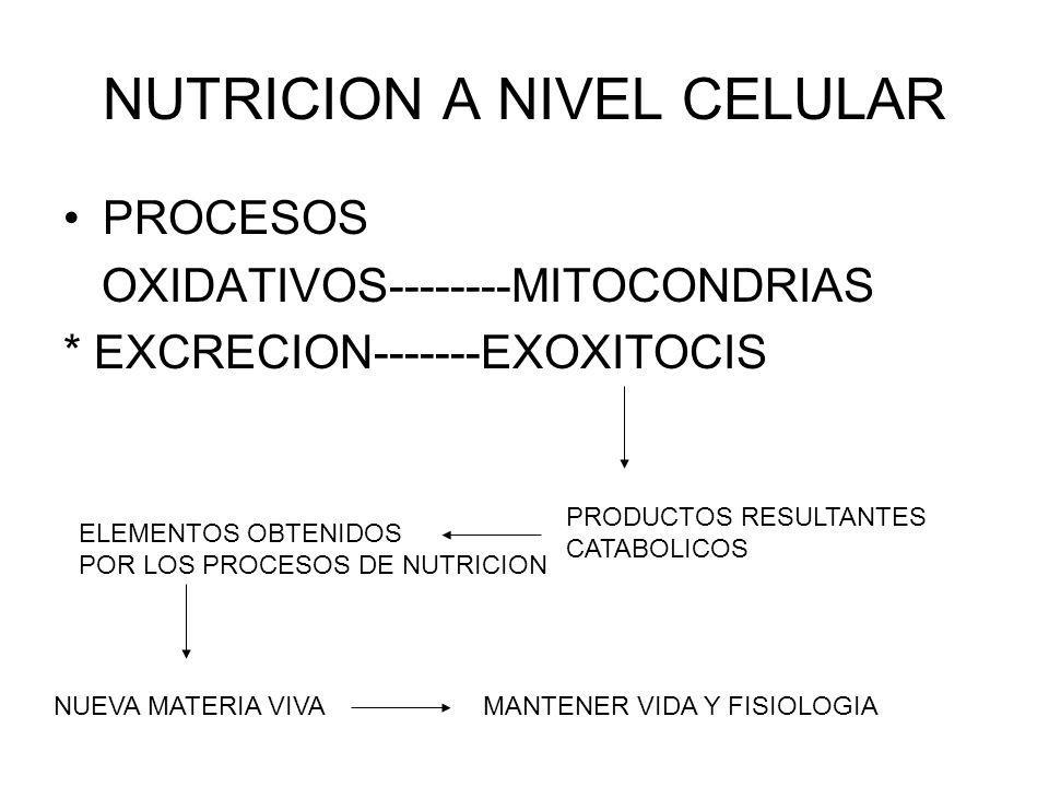 NUTRICION A NIVEL CELULAR PROCESOS OXIDATIVOS--------MITOCONDRIAS * EXCRECION-------EXOXITOCIS PRODUCTOS RESULTANTES CATABOLICOS ELEMENTOS OBTENIDOS POR LOS PROCESOS DE NUTRICION NUEVA MATERIA VIVAMANTENER VIDA Y FISIOLOGIA