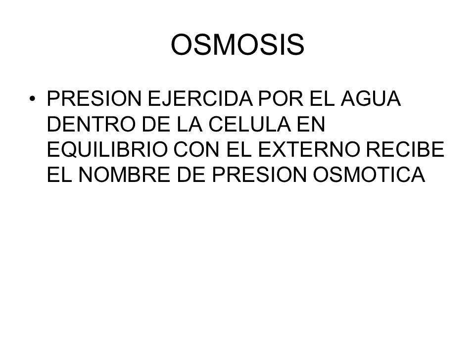 OSMOSIS PRESION EJERCIDA POR EL AGUA DENTRO DE LA CELULA EN EQUILIBRIO CON EL EXTERNO RECIBE EL NOMBRE DE PRESION OSMOTICA