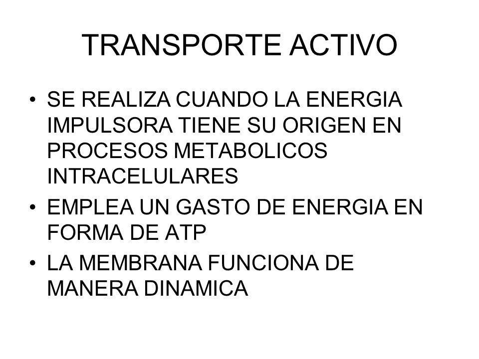 TRANSPORTE ACTIVO SE REALIZA CUANDO LA ENERGIA IMPULSORA TIENE SU ORIGEN EN PROCESOS METABOLICOS INTRACELULARES EMPLEA UN GASTO DE ENERGIA EN FORMA DE