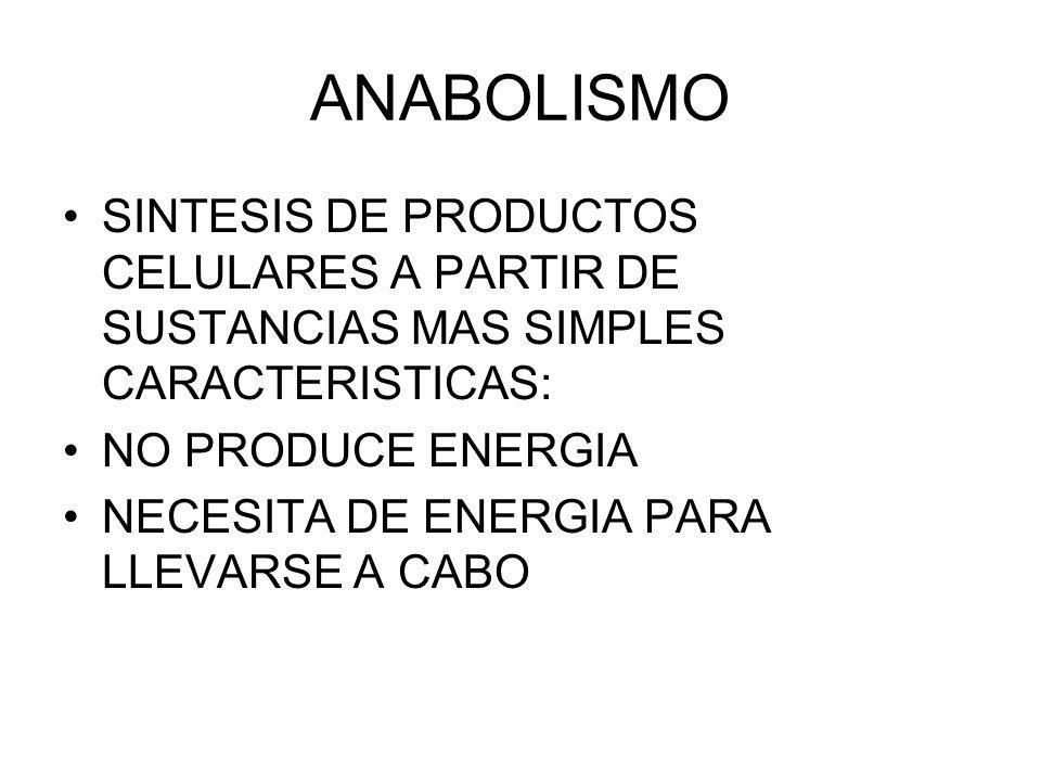 ANABOLISMO SINTESIS DE PRODUCTOS CELULARES A PARTIR DE SUSTANCIAS MAS SIMPLES CARACTERISTICAS: NO PRODUCE ENERGIA NECESITA DE ENERGIA PARA LLEVARSE A