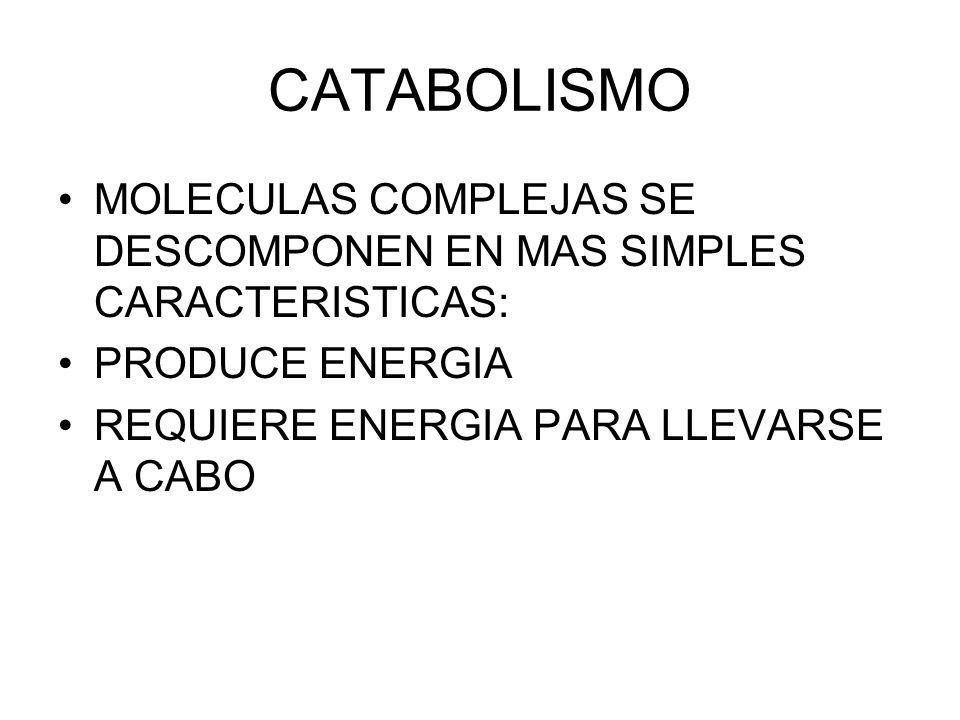 CATABOLISMO MOLECULAS COMPLEJAS SE DESCOMPONEN EN MAS SIMPLES CARACTERISTICAS: PRODUCE ENERGIA REQUIERE ENERGIA PARA LLEVARSE A CABO
