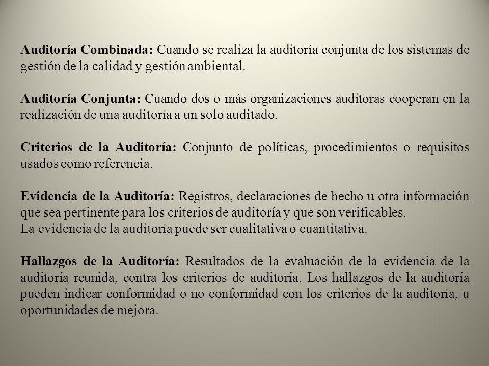 En el informe de la Auditoría ambiental ….