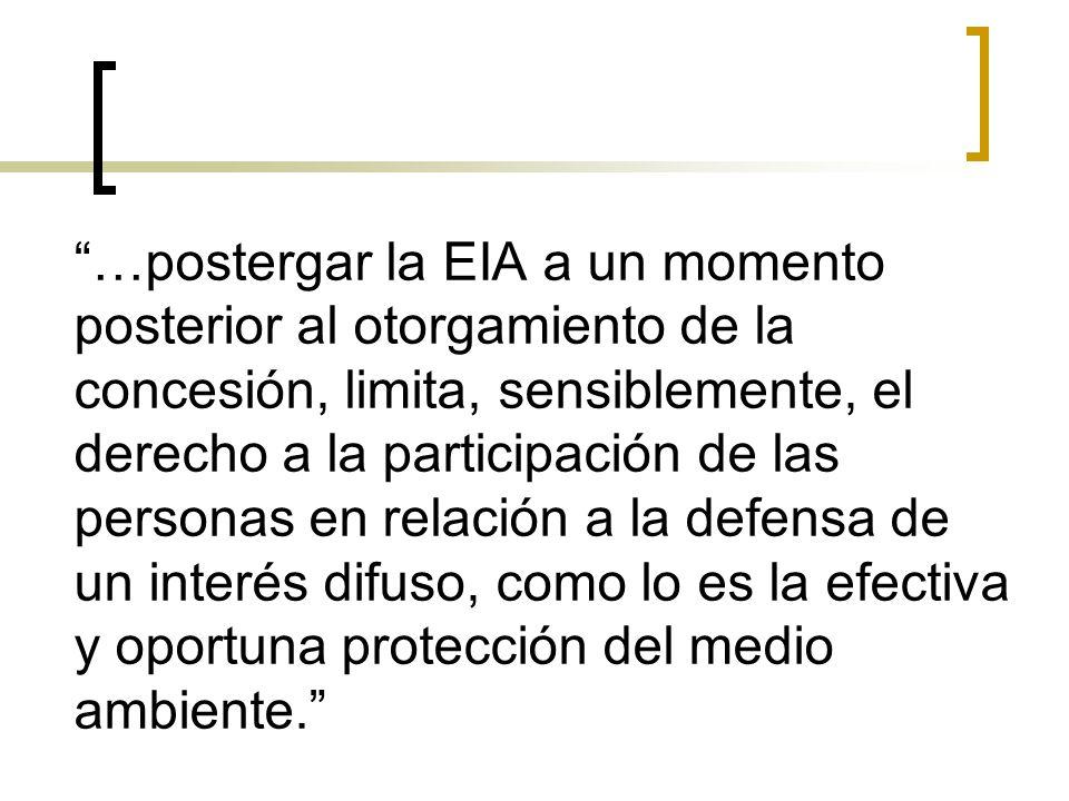 …postergar la EIA a un momento posterior al otorgamiento de la concesión, limita, sensiblemente, el derecho a la participación de las personas en rela