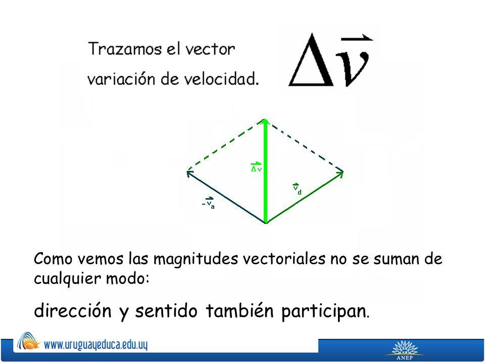 Como vemos las magnitudes vectoriales no se suman de cualquier modo: dirección y sentido también participan.