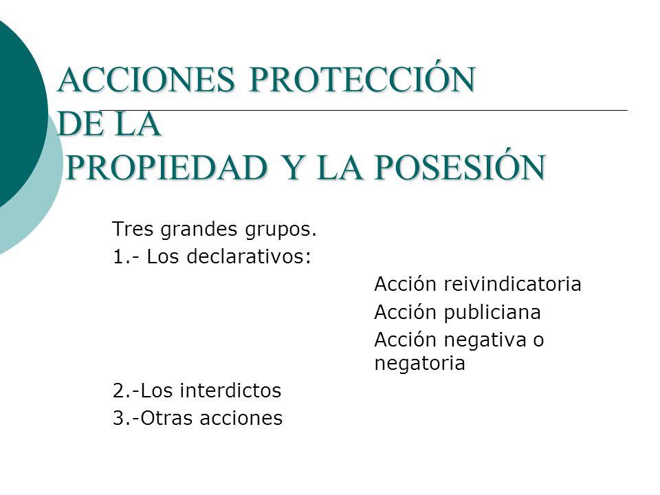 ACCIONES PROTECCIÓN DE LA PROPIEDAD Y LA POSESIÓN Tres grandes grupos.