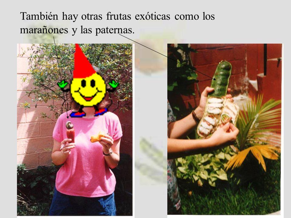 México Centro América Sur América (España) La comida latinoamericana: La tortilla