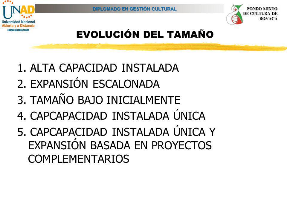 DIPLOMADO EN GESTIÓN CULTURAL FONDO MIXTO DE CULTURA DE BOYACÁ EVOLUCIÓN DEL TAMAÑO 1. ALTA CAPACIDAD INSTALADA 2. EXPANSIÓN ESCALONADA 3. TAMAÑO BAJO