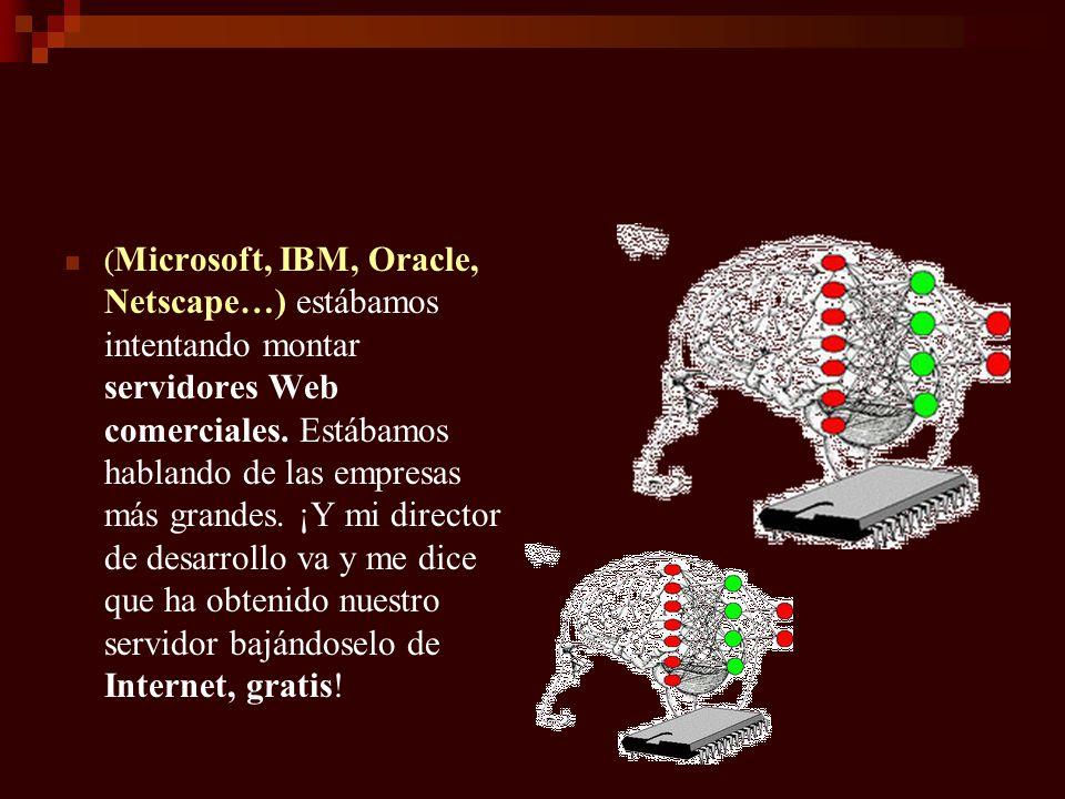 ( Microsoft, IBM, Oracle, Netscape…) estábamos intentando montar servidores Web comerciales. Estábamos hablando de las empresas más grandes. ¡Y mi dir