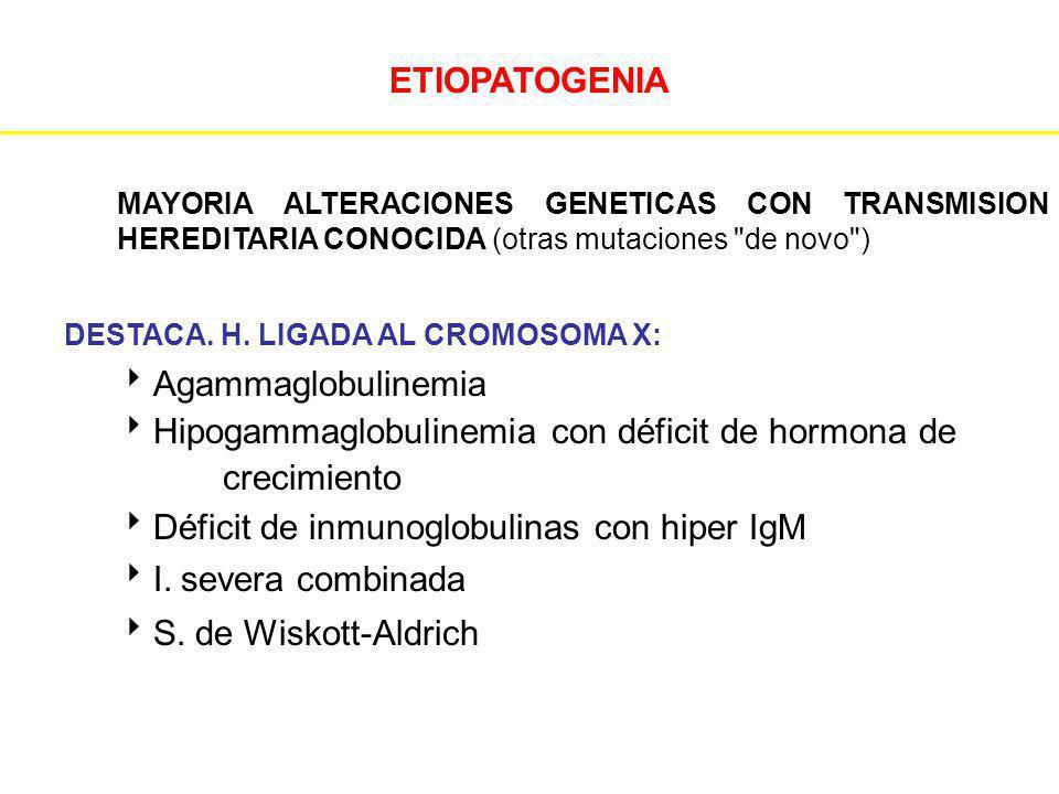 ETIOPATOGENIA MAYORIA ALTERACIONES GENETICAS CON TRANSMISION HEREDITARIA CONOCIDA (otras mutaciones