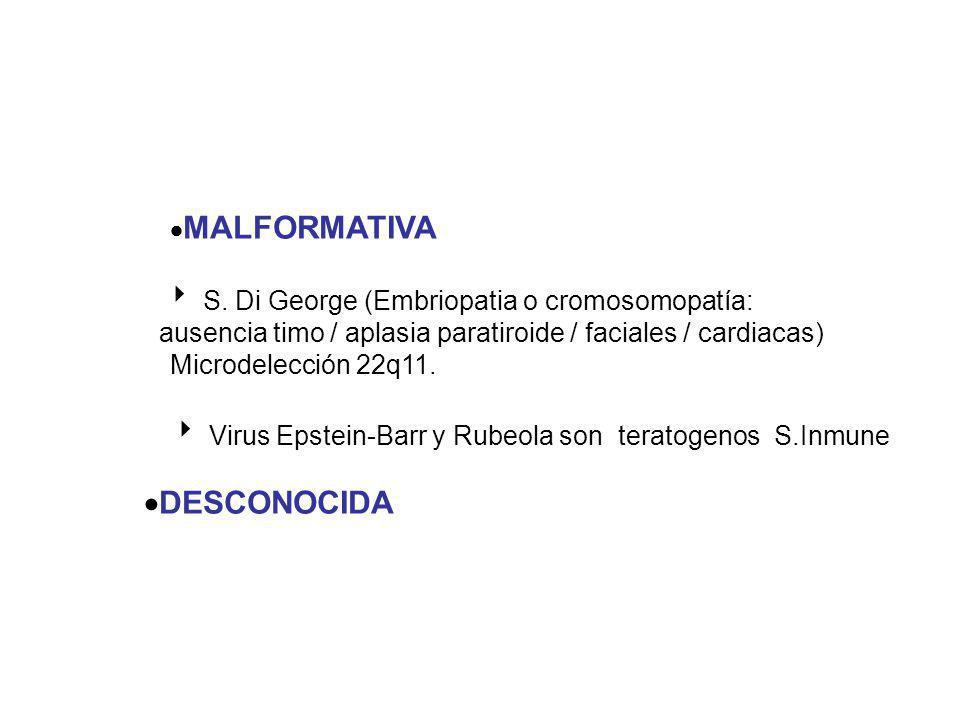 MALFORMATIVA S. Di George (Embriopatia o cromosomopatía: ausencia timo / aplasia paratiroide / faciales / cardiacas) Microdelección 22q11. Virus Epste