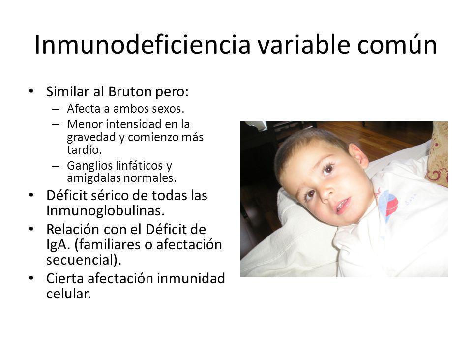 Inmunodeficiencia variable común Similar al Bruton pero: – Afecta a ambos sexos. – Menor intensidad en la gravedad y comienzo más tardío. – Ganglios l