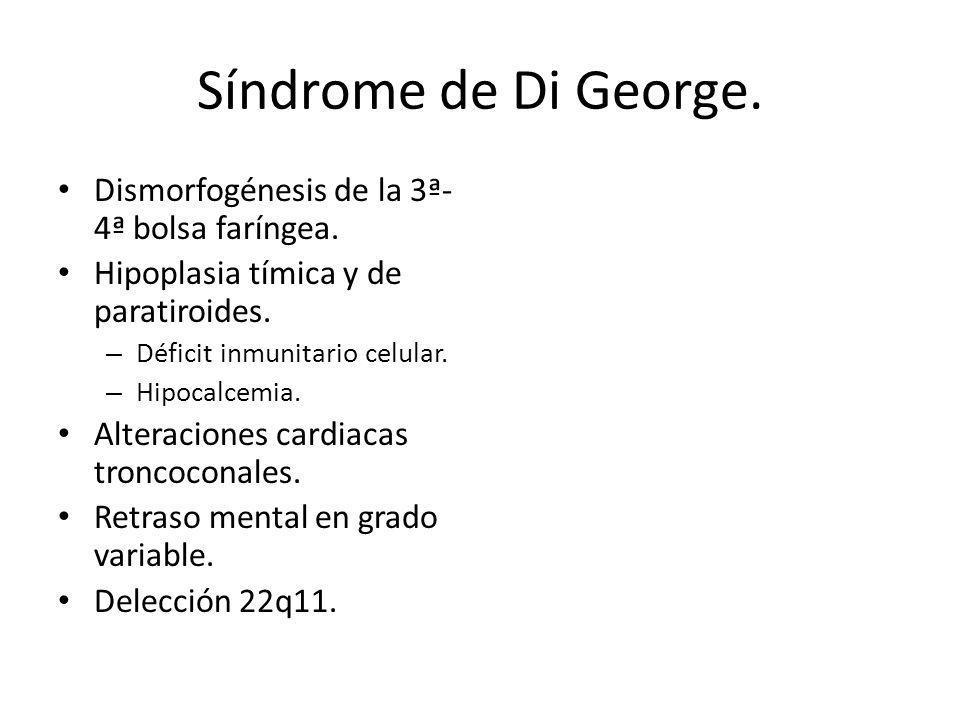 Síndrome de Di George. Dismorfogénesis de la 3ª- 4ª bolsa faríngea. Hipoplasia tímica y de paratiroides. – Déficit inmunitario celular. – Hipocalcemia