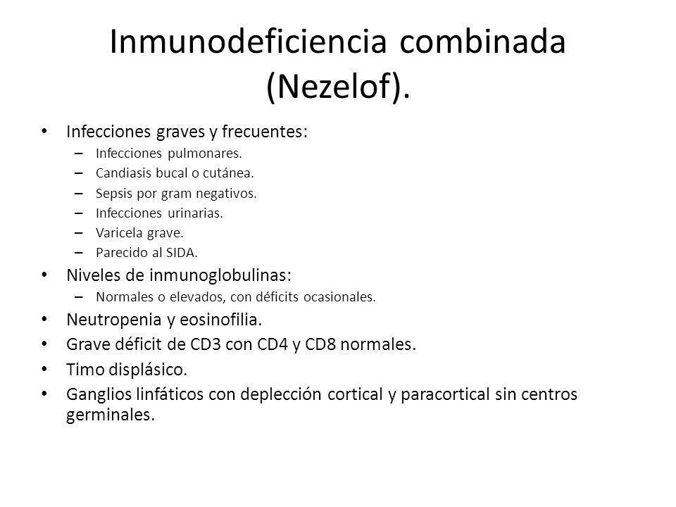 Inmunodeficiencia combinada (Nezelof). Infecciones graves y frecuentes: – Infecciones pulmonares. – Candiasis bucal o cutánea. – Sepsis por gram negat