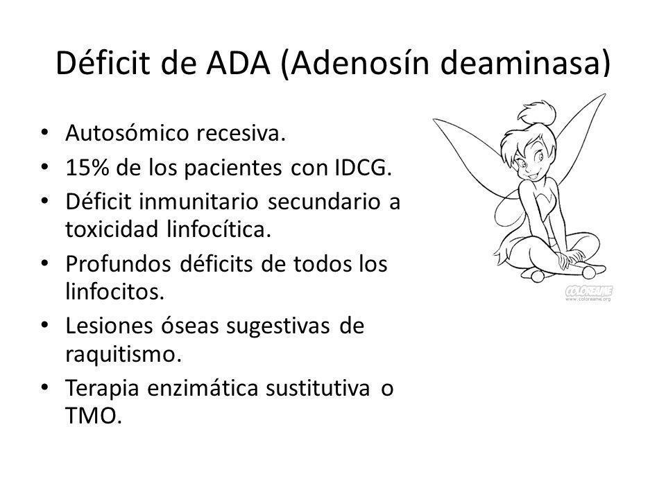 Déficit de ADA (Adenosín deaminasa) Autosómico recesiva. 15% de los pacientes con IDCG. Déficit inmunitario secundario a toxicidad linfocítica. Profun