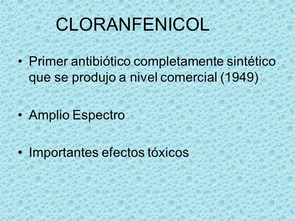 CLORANFENICOL Primer antibiótico completamente sintético que se produjo a nivel comercial (1949) Amplio Espectro Importantes efectos tóxicos