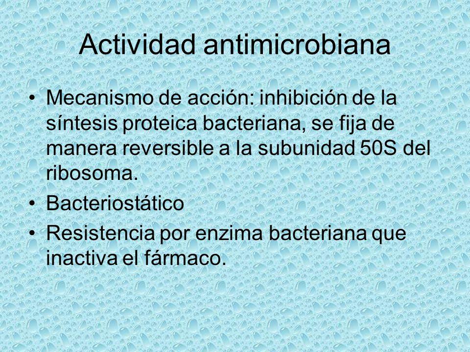Actividad antimicrobiana Mecanismo de acción: inhibición de la síntesis proteica bacteriana, se fija de manera reversible a la subunidad 50S del ribos