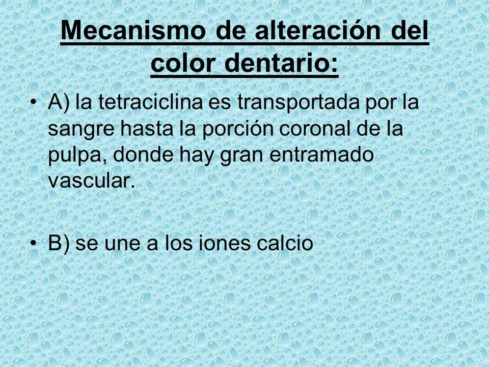Mecanismo de alteración del color dentario: A) la tetraciclina es transportada por la sangre hasta la porción coronal de la pulpa, donde hay gran entr