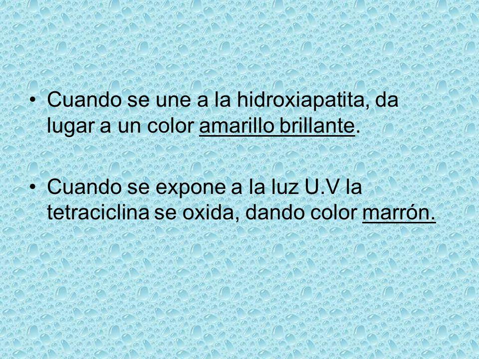 Cuando se une a la hidroxiapatita, da lugar a un color amarillo brillante. Cuando se expone a la luz U.V la tetraciclina se oxida, dando color marrón.
