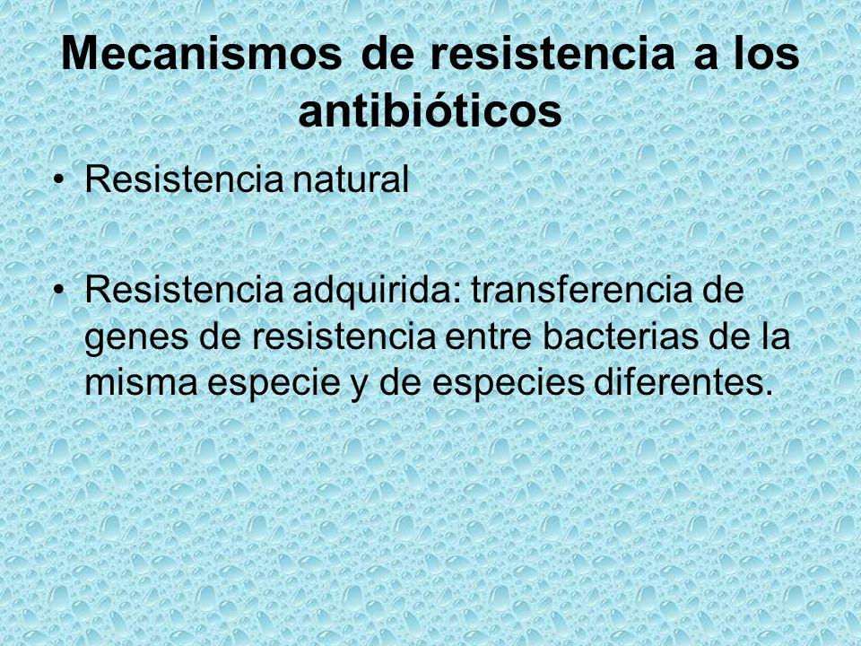 Mecanismos de resistencia a los antibióticos Resistencia natural Resistencia adquirida: transferencia de genes de resistencia entre bacterias de la mi