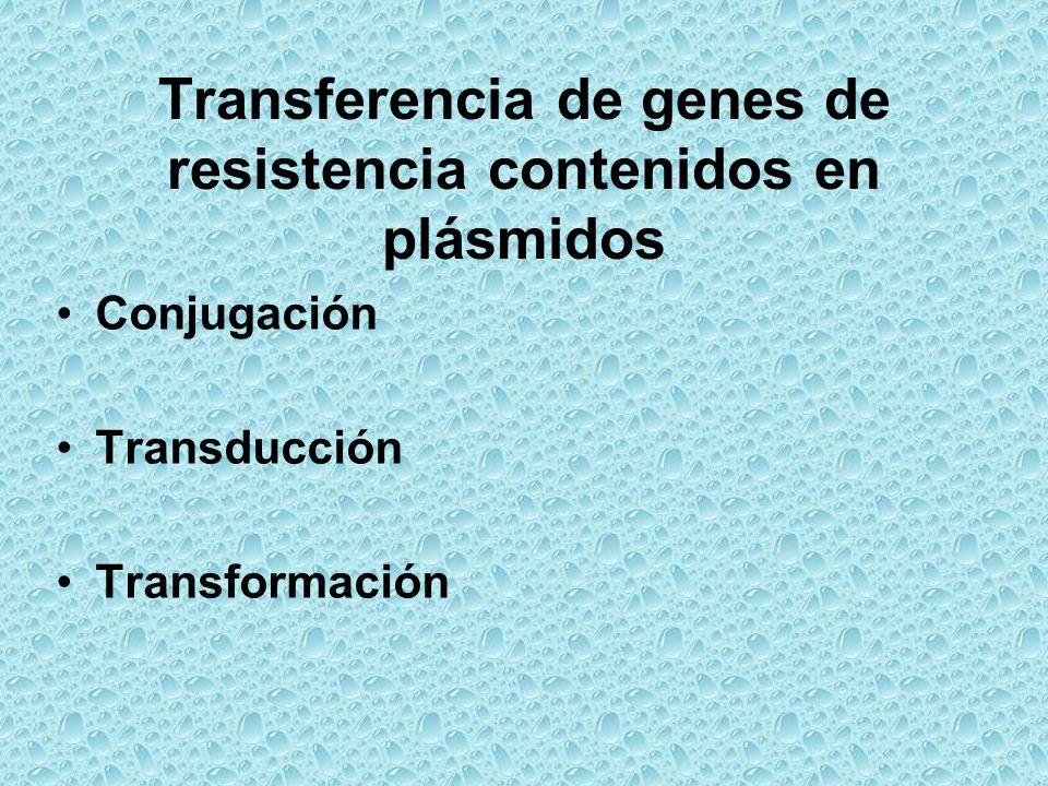 Transferencia de genes de resistencia contenidos en plásmidos Conjugación Transducción Transformación