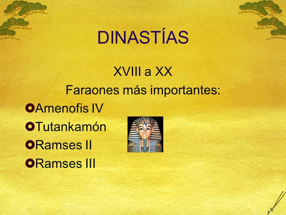 DINASTÍAS XVIII a XX Faraones más importantes: Amenofis IV Tutankamón Ramses II Ramses III