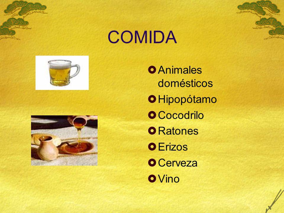 COMIDA Animales domésticos Hipopótamo Cocodrilo Ratones Erizos Cerveza Vino