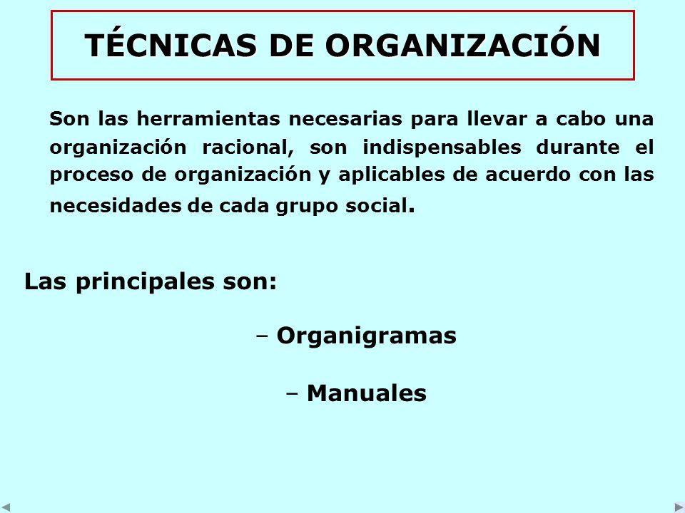 TÉCNICAS DE ORGANIZACIÓN Son las herramientas necesarias para llevar a cabo una organización racional, son indispensables durante el proceso de organización y aplicables de acuerdo con las necesidades de cada grupo social.