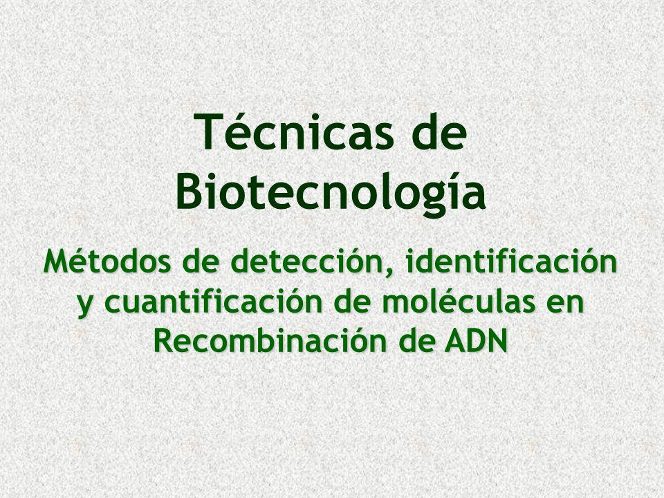 Objetivo Conocer las diversas técnicas para detección, identificación y cuantificación de:Conocer las diversas técnicas para detección, identificación y cuantificación de: –ADN, –RNA y –Proteínas