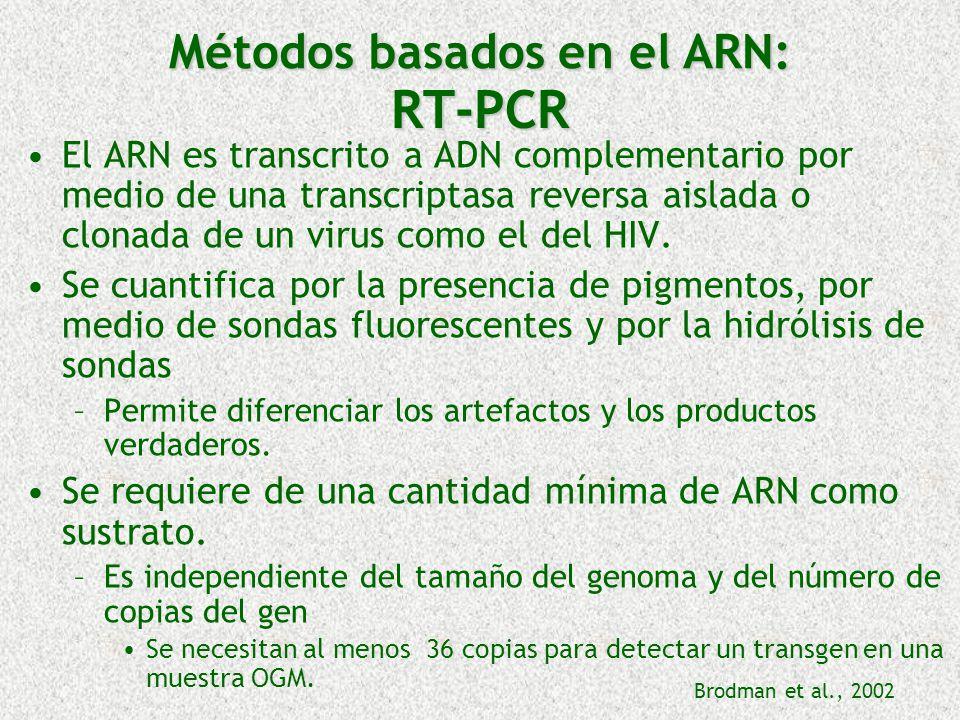 RT-PCR El ARN es transcrito a ADN complementario por medio de una transcriptasa reversa aislada o clonada de un virus como el del HIV. Se cuantifica p