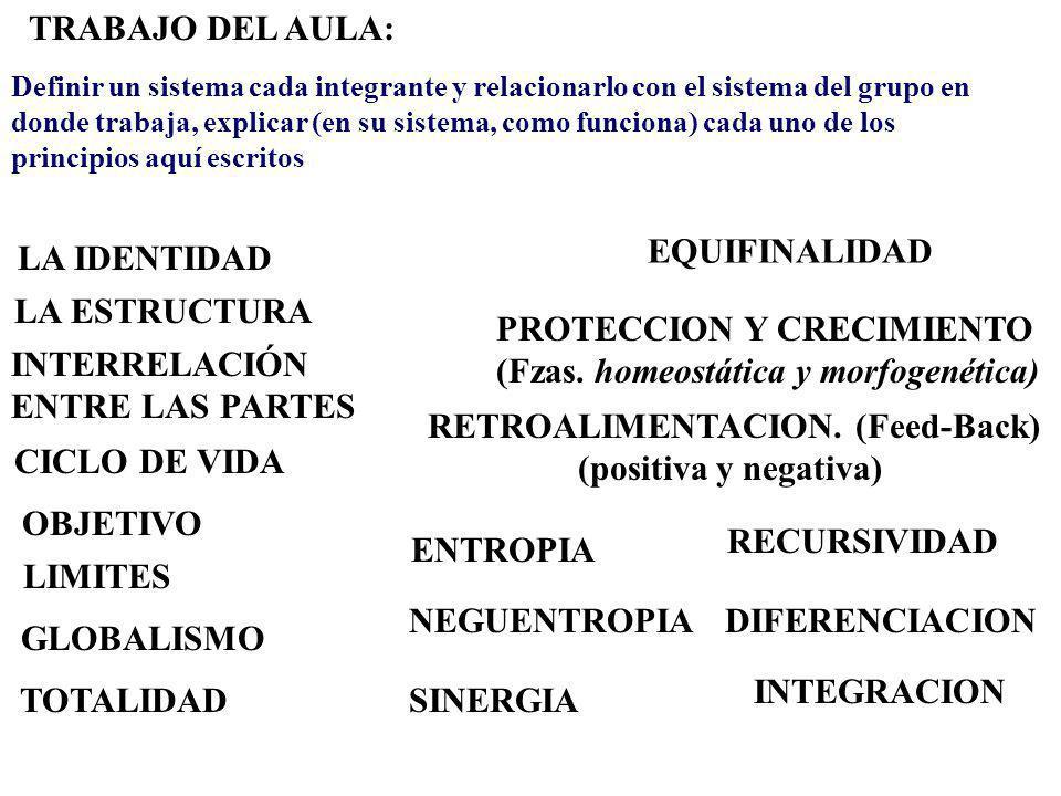 LA IDENTIDAD LA ESTRUCTURA INTERRELACIÓN ENTRE LAS PARTES OBJETIVO CICLO DE VIDA LIMITES GLOBALISMO TOTALIDAD EQUIFINALIDAD PROTECCION Y CRECIMIENTO (