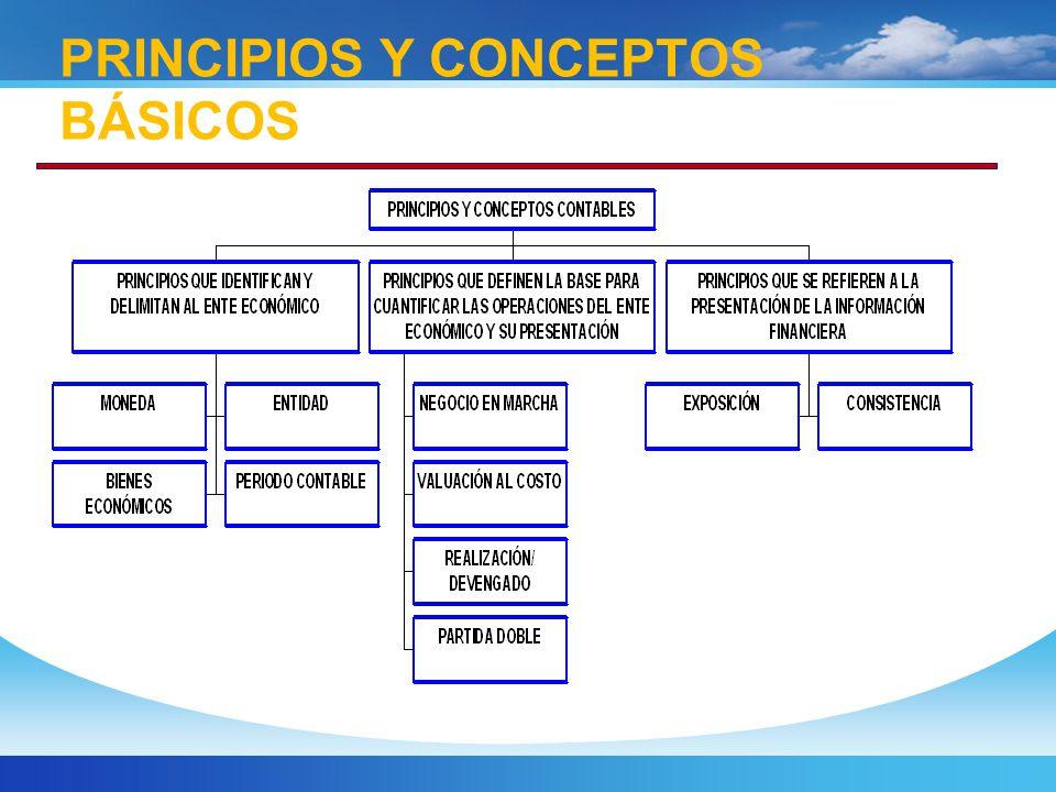PRINCIPIOS Y CONCEPTOS BÁSICOS