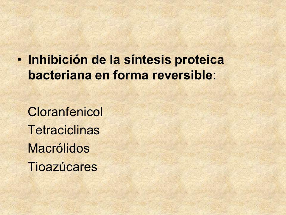 Inhibición de la síntesis proteica bacteriana en forma reversible: Cloranfenicol Tetraciclinas Macrólidos Tioazúcares