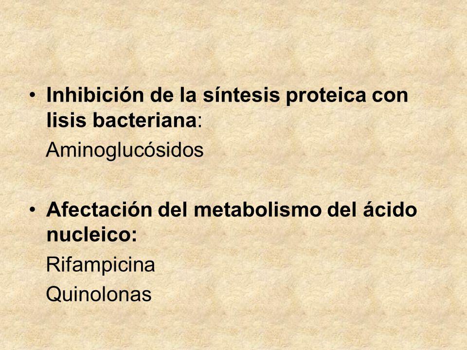 Inhibición de la síntesis proteica con lisis bacteriana: Aminoglucósidos Afectación del metabolismo del ácido nucleico: Rifampicina Quinolonas