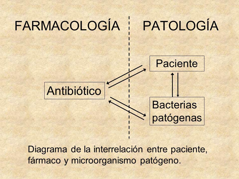 FARMACOLOGÍA PATOLOGÍA Paciente Bacterias patógenas Antibiótico Diagrama de la interrelación entre paciente, fármaco y microorganismo patógeno.