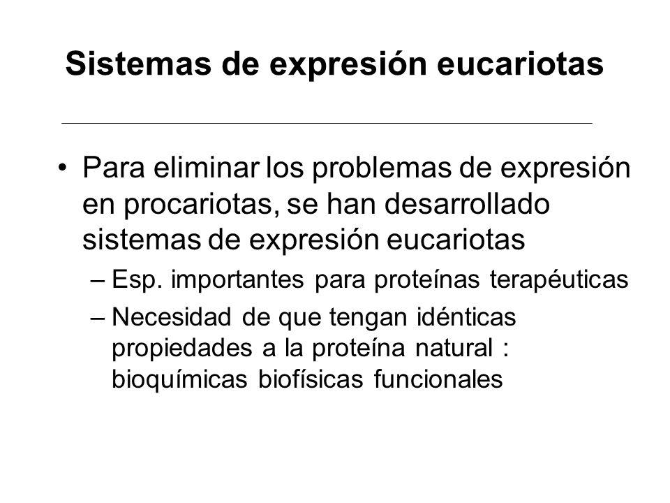 Sistemas de expresión eucariotas Para eliminar los problemas de expresión en procariotas, se han desarrollado sistemas de expresión eucariotas –Esp. i