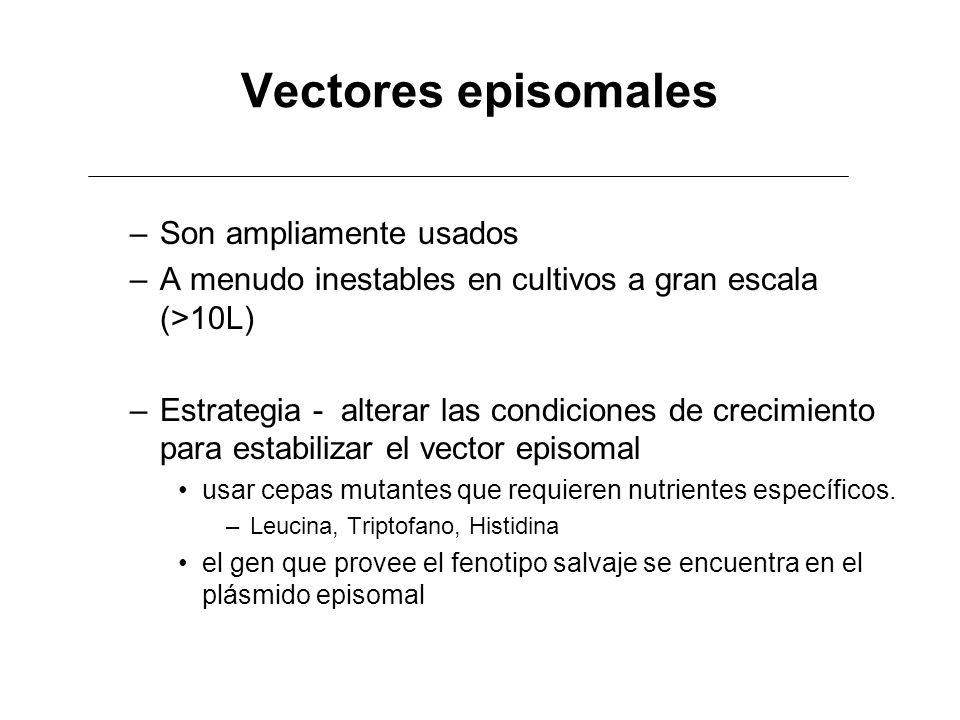 Vectores episomales –Son ampliamente usados –A menudo inestables en cultivos a gran escala (>10L) –Estrategia - alterar las condiciones de crecimiento