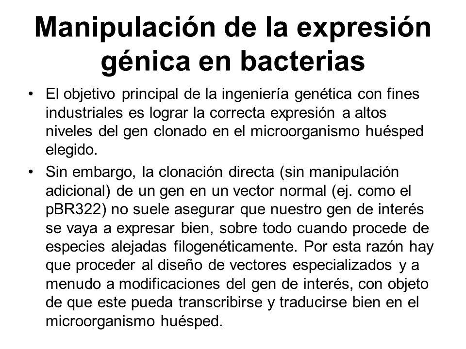 Manipulación de la expresión génica en bacterias El objetivo principal de la ingeniería genética con fines industriales es lograr la correcta expresió