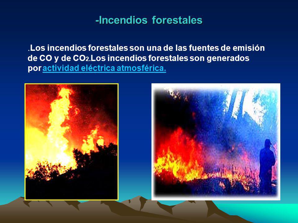 -Incendios forestales.Los incendios forestales son una de las fuentes de emisión de CO y de CO 2.