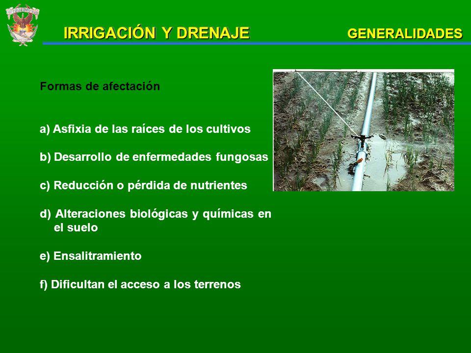 GENERALIDADES INUNDACION Y SATURACION DE LA CAPA ARABLE ALTOS NIVELES FREATICOS ExternasInternasExternasInternas FUENTES DE ALIMENTACION NATURALES1.- desbordamientos de ríos 2.- Formación de arroyos de áreas circundantes elevadas 1- Precipitación atmosférica no escurrida y no percolada 1.- Corrientes subterráneas potentes y someras 1.- Precipitación atmosférica percolada 2.- Subalimentación de acuíferos semiconfinados ARTIFICIALES3.- Ruptura de bordos de defensa 2.- Coleos de riego 3.- Ruptura de canales 2.- Filtraciones desde vasos de almacenamientos y grandes canales 3.- Percolación por sobreriego 4.- Filtraciones en canales OBSTACULOS QUE IMPIDEN LA SALIDA DE AGUA NATURALES1.- Altos niveles de cuerpo receptor de aguas de drenaje y desague 2.- Altos Topográficos 1.- Condiciones topográficas desfavorables al escurrimiento superficial 2.- Suelos con baja velocidad de infiltración 1.- Condiciones geológicas desfavorables al escurrimiento subterráneo 1.- Subsuelos poco permeables 2.- Altos niveles piezométricos de acuíferos semiconfinados ARTIFICIALES3.- Obstrucciones de drenes principales y colectores 4.- Obstrucciones al escurrimiento regional por terraplenes del FFCC y carreteras 3.- Dificultades de la descarga de drenes a colectores 4.- Vegetación acuática y azolves que disminuyen la sección hidráulica y dificultan el movimiento de agua en drenes 3.- Obstrucciones en drenes entubados CAUSAS DE LOS PROBLEMAS DE EXCESOS DE AGUA