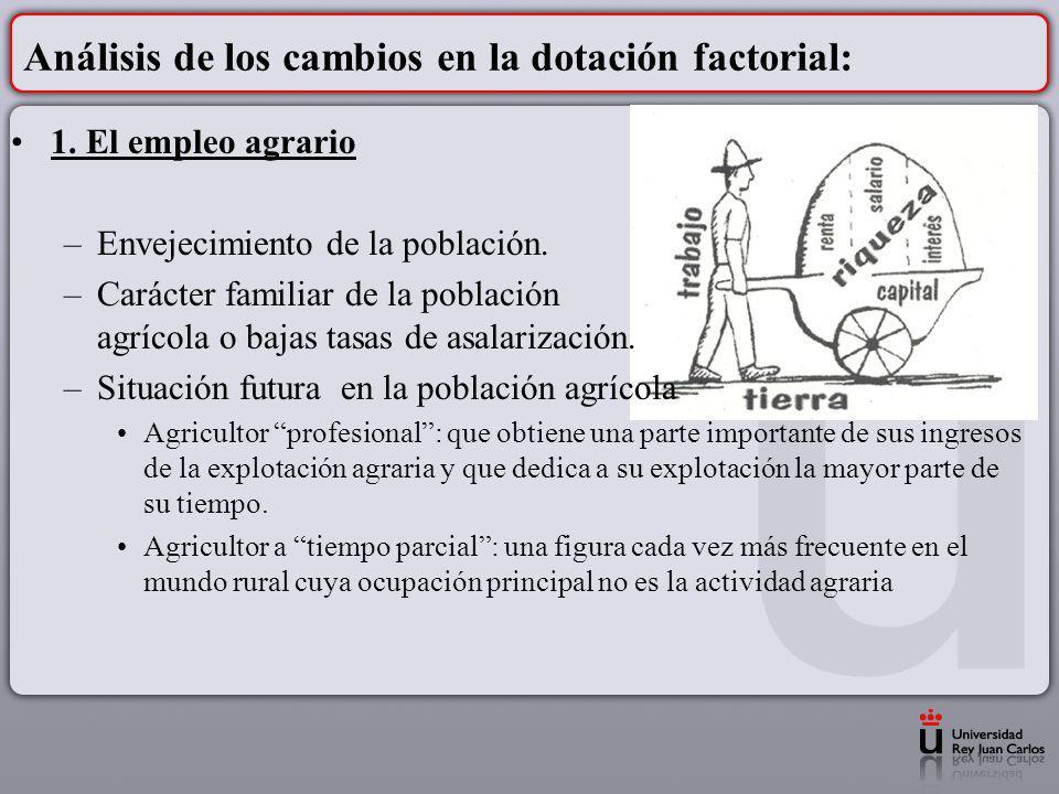 Análisis de los cambios en la dotación factorial: 1. El empleo agrario –Envejecimiento de la población. –Carácter familiar de la población agrícola o