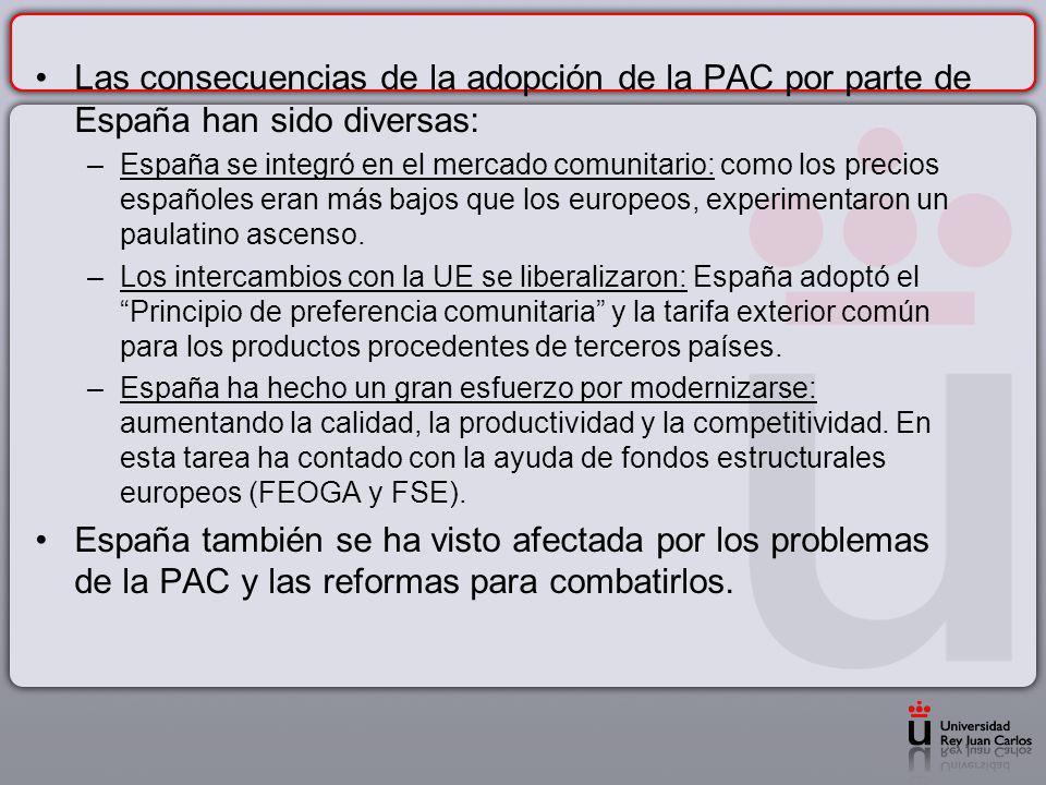 Las consecuencias de la adopción de la PAC por parte de España han sido diversas: –España se integró en el mercado comunitario: como los precios españ