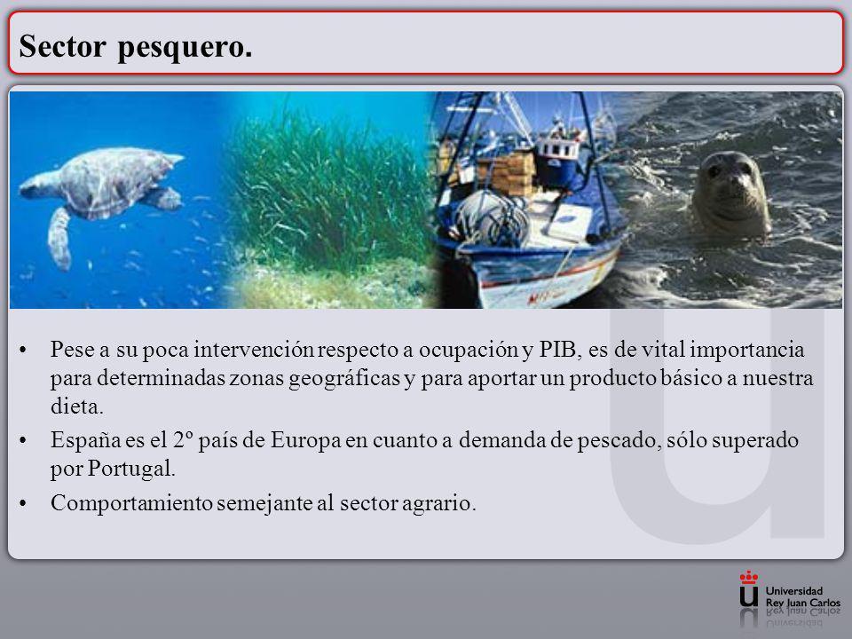 Sector pesquero. Pese a su poca intervención respecto a ocupación y PIB, es de vital importancia para determinadas zonas geográficas y para aportar un