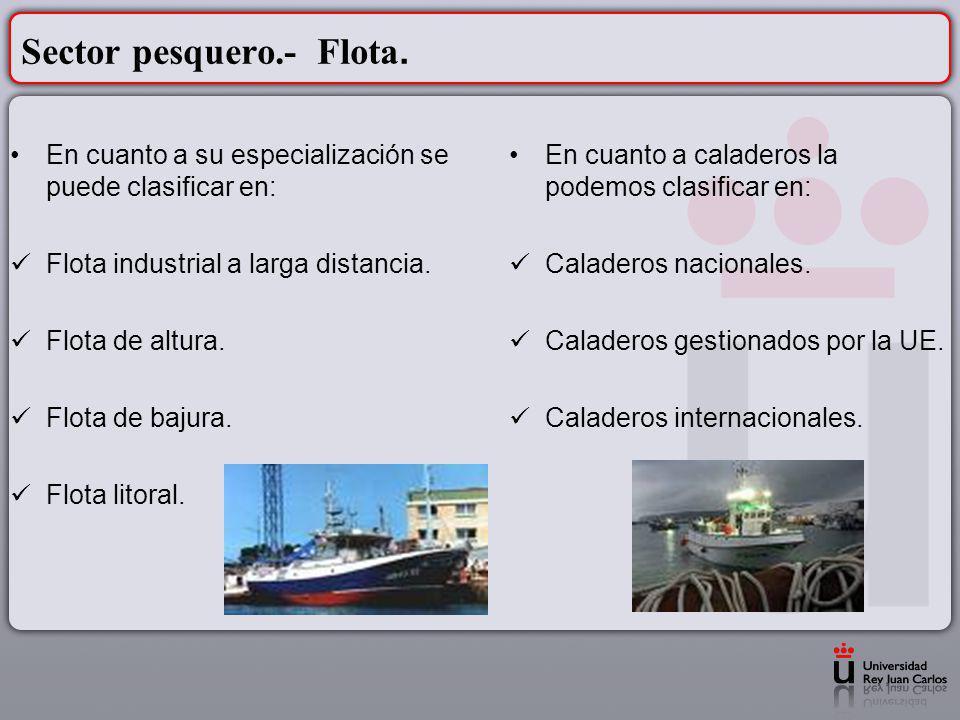 Sector pesquero.- Flota. En cuanto a su especialización se puede clasificar en: Flota industrial a larga distancia. Flota de altura. Flota de bajura.