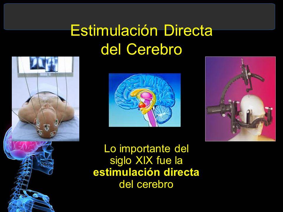 Estimulación Directa del Cerebro Lo importante del siglo XIX fue la estimulación directa del cerebro