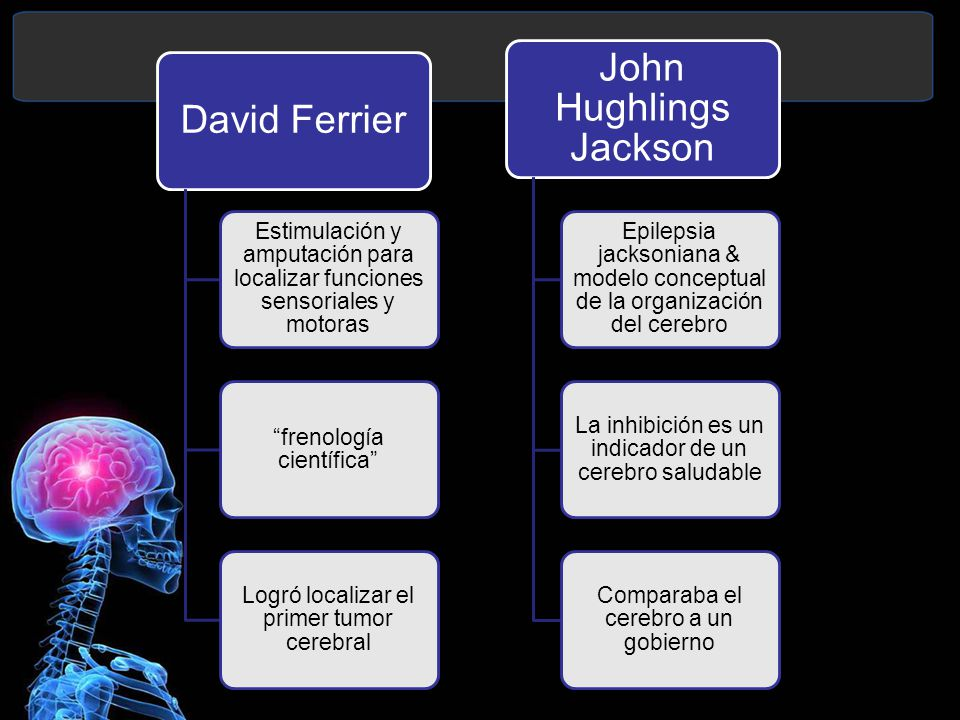 David Ferrier Estimulación y amputación para localizar funciones sensoriales y motoras frenología científica Logró localizar el primer tumor cerebral John Hughlings Jackson Epilepsia jacksoniana & modelo conceptual de la organización del cerebro La inhibición es un indicador de un cerebro saludable Comparaba el cerebro a un gobierno