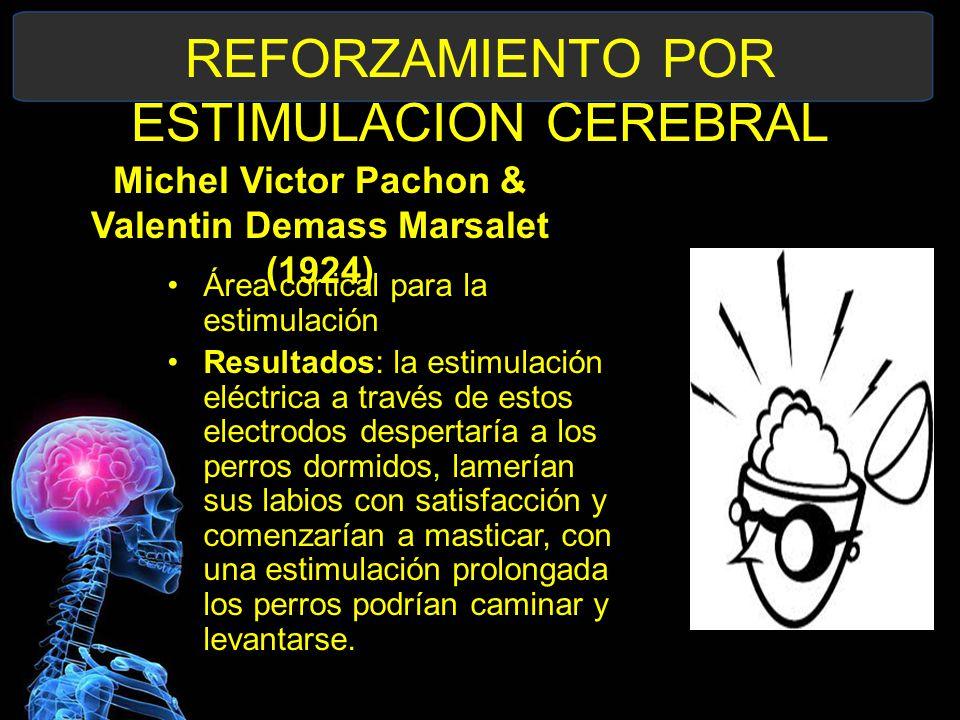REFORZAMIENTO POR ESTIMULACION CEREBRAL Michel Victor Pachon & Valentin Demass Marsalet (1924) Área cortical para la estimulación Resultados: la estimulación eléctrica a través de estos electrodos despertaría a los perros dormidos, lamerían sus labios con satisfacción y comenzarían a masticar, con una estimulación prolongada los perros podrían caminar y levantarse.