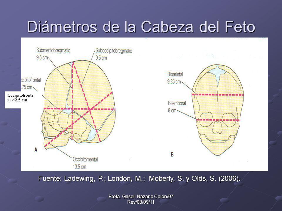 Profa. Grisell Nazario Colón/07 Rev/08/09/11 Diámetros de la Cabeza del Feto Occipitofrontal 11-12.5 cm Fuente: Ladewing, P.; London, M.; Moberly, S.